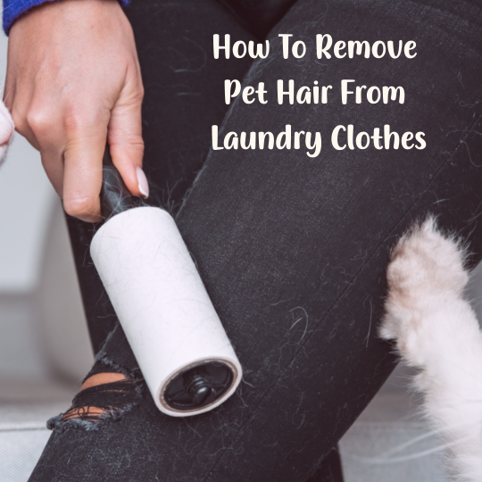 How To Remove Pet Hair From Laundry Clothes